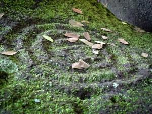 Ometepe's Petroglyphs in Nicaragua